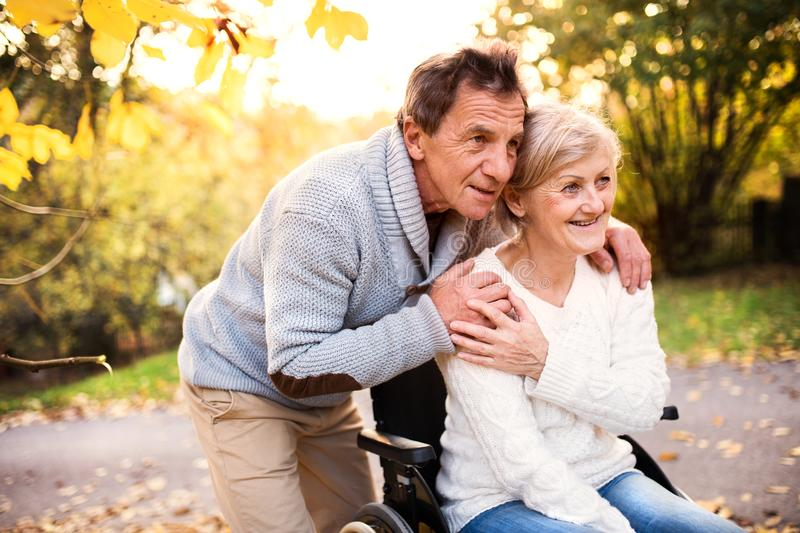 Senior couple in wheelchair in autumn nature. royalty free stock photography