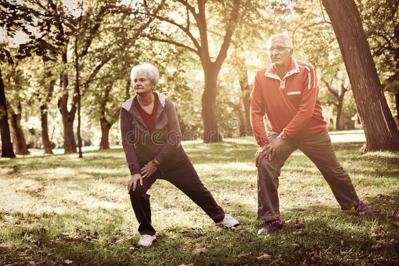 Senior couple working exercise for legs together in forest. Sunny day royalty free stock photography