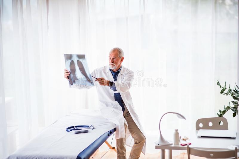 Senior doctor looking at chest x-ray in office. royalty free stock image