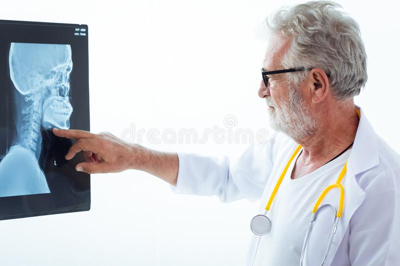 Senior doctor looking film x-ray royalty free stock images