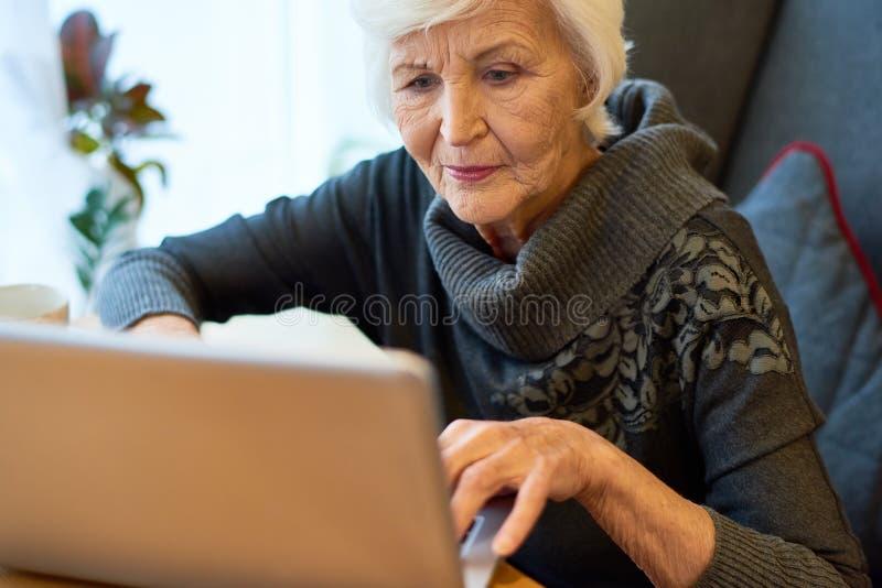 Senior Entrepreneur Focused on Work stock image
