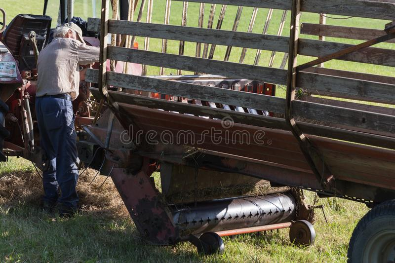senior farmer haying with an old tractor stock photo