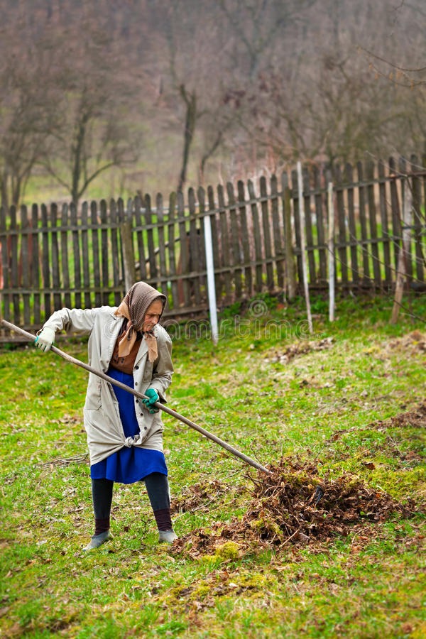 Senior Farmer Spring Cleaning The Garden Royalty Free Stock Photo