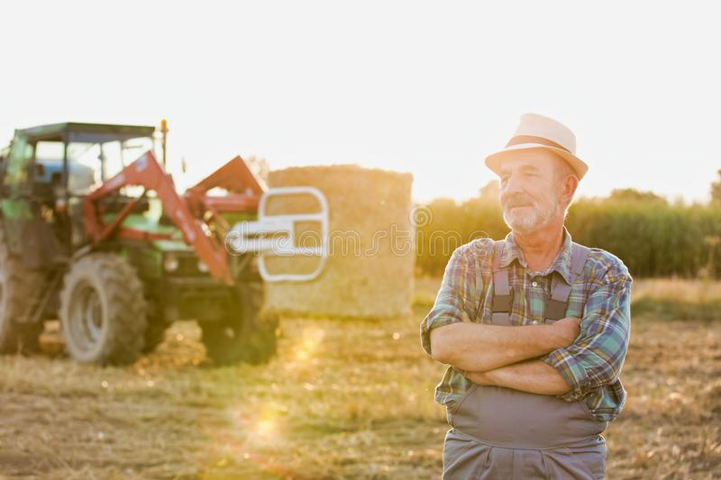 Senior farmer standing with arms corssed against farm tractor, round bale hay in field with yellow lens flare in background. Photo of Senior farmer standing with stock image