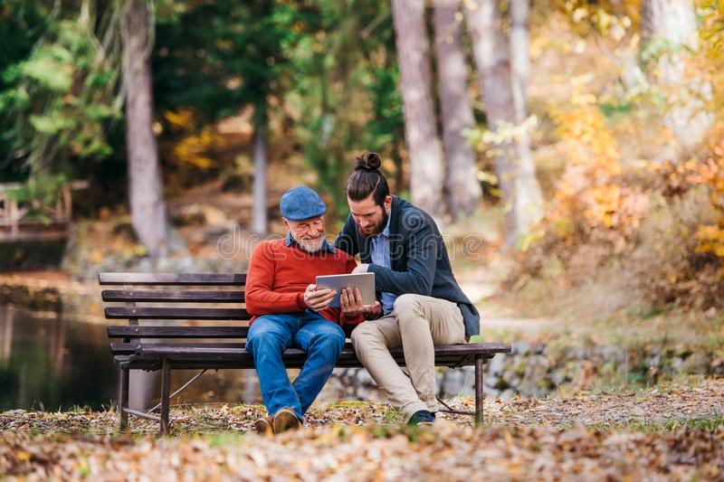 Senior father and his son sitting on bench in nature, using tablet. royalty free stock photos