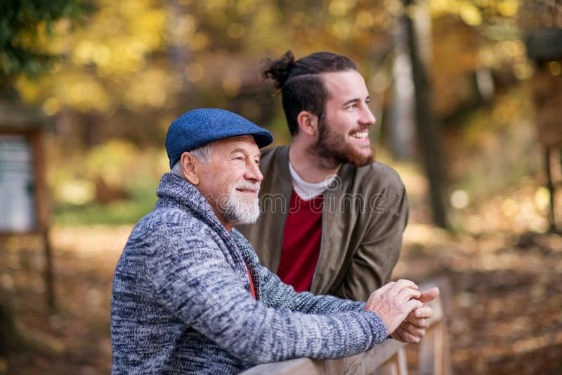 Senior father and his son on walk in nature, standing and talking. stock photo