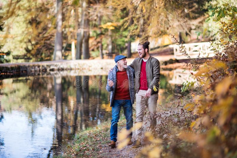 Senior father and his son walking in nature, talking. Senior father and his young son walking in nature, talking royalty free stock photo