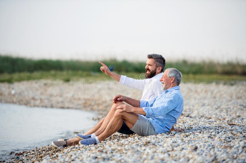 Senior father and mature son sitting by the lake. Copy space. royalty free stock photography