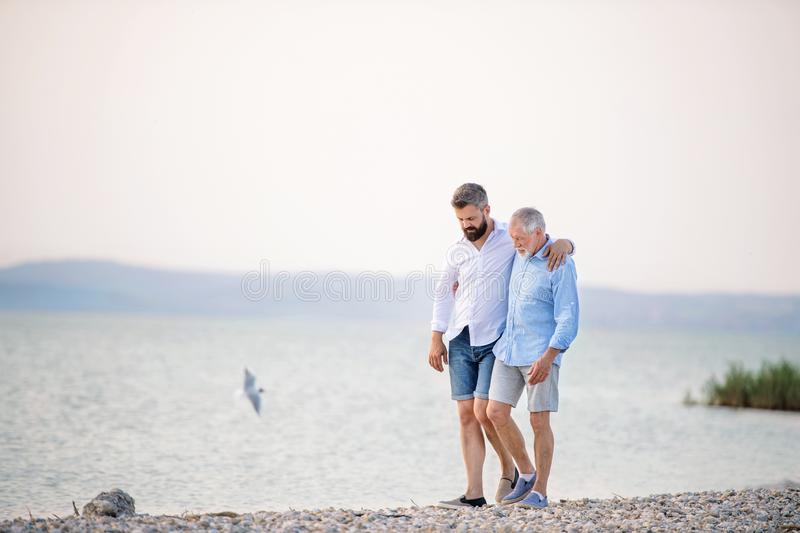 Senior father and mature son walking by the lake. Copy space. royalty free stock images