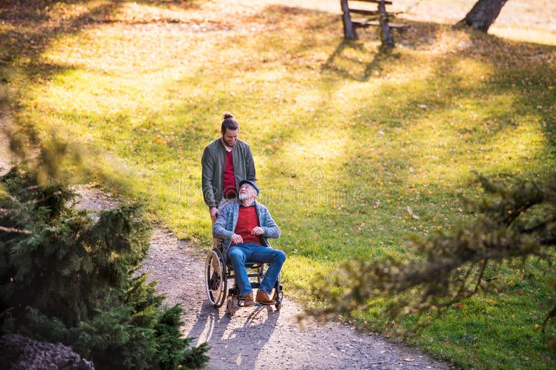 Senior father with wheelchair and his son on walk in nature. A senior father with wheelchair and his son on walk in nature royalty free stock photography