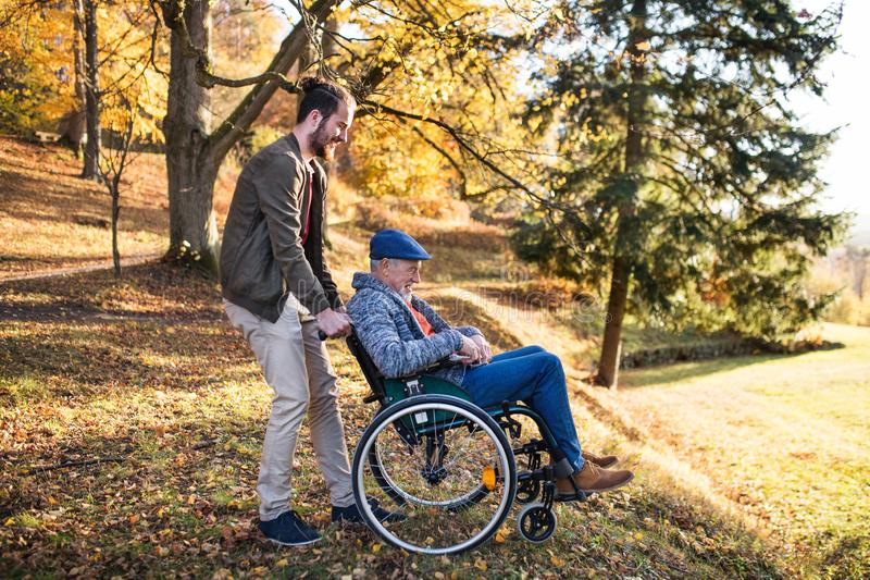 Senior father with wheelchair and his son on walk in nature. A senior father with wheelchair and his son on walk in nature stock images