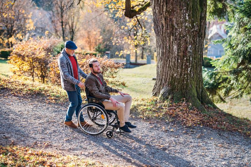 Senior father with wheelchair and his son on walk in nature. stock image