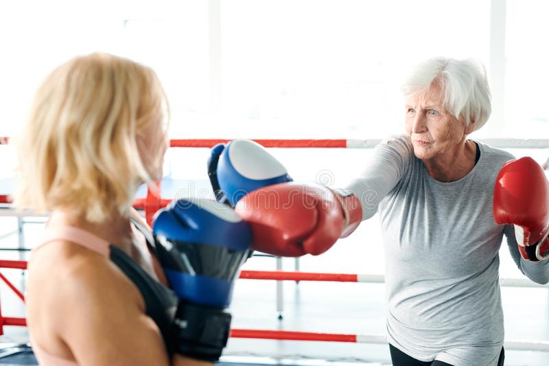 Women on boxing ring. Senior female in activewear and boxing gloves kicking her young rival while both preparing for sports competition stock photos