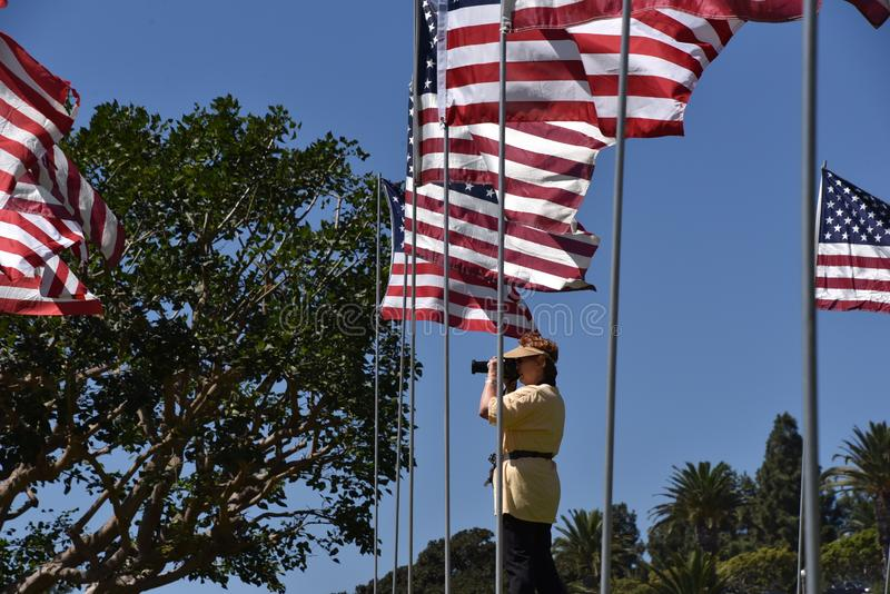 Senior female photographer shooting pictures at a memorial USA Flag display royalty free stock photos