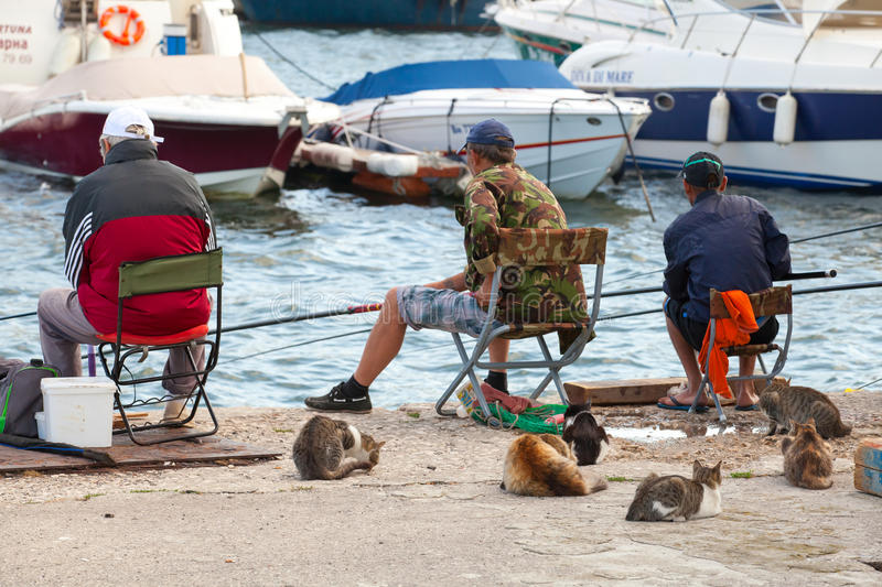 Senior fishermen catch fish from the shore. Varna, Bulgaria - July 20, 2014: Senior fishermen catch fish from the shore, group of street cats waiting for haul stock image