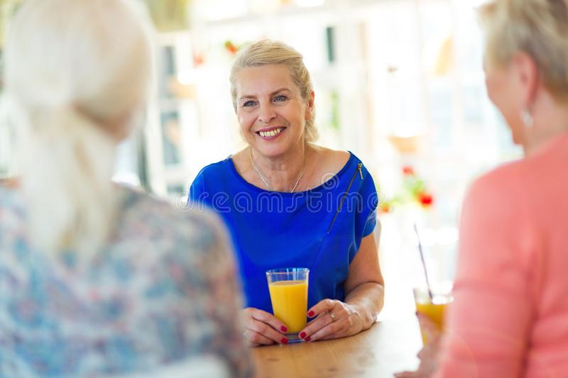 Senior friends having good time together. In a bar royalty free stock image