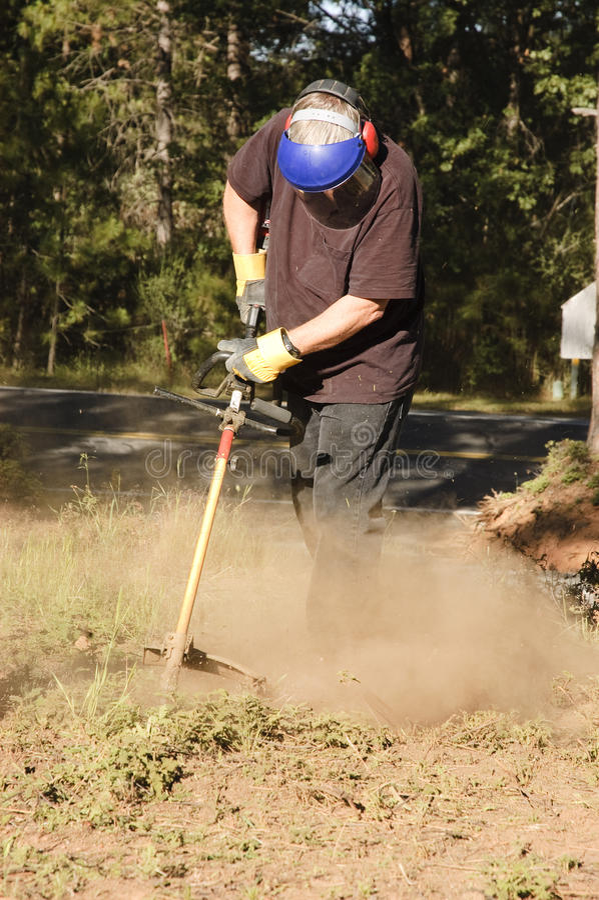 Senior gardener royalty free stock images