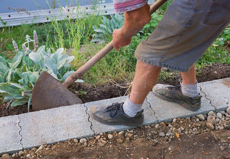 Senior gardener build a wall fundament. In the garden royalty free stock photography