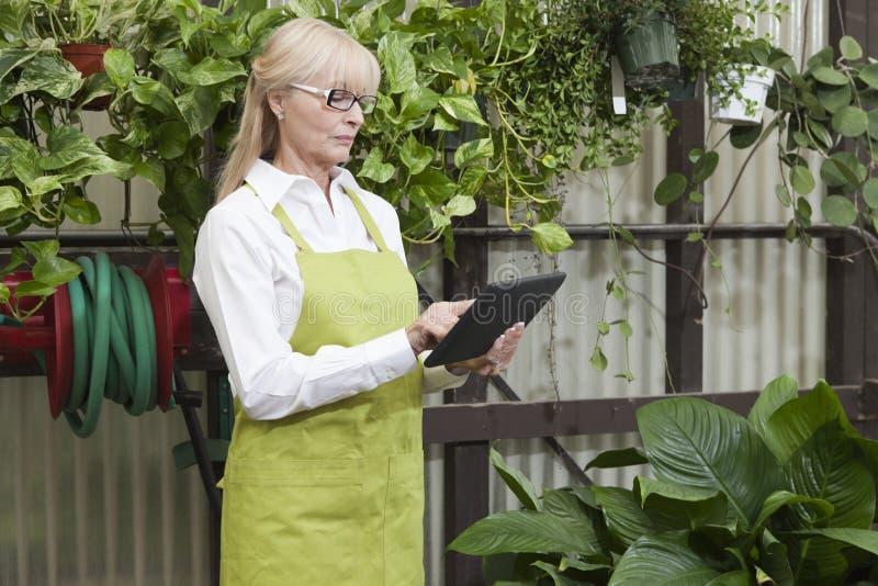 Senior gardener using digital tablet in garden center royalty free stock photo