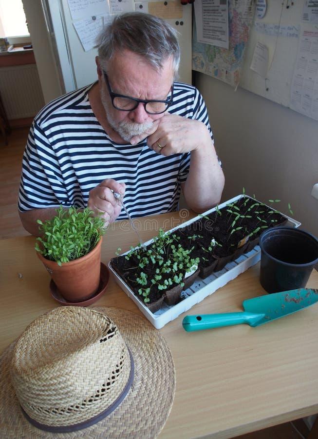 Free Senior Gardener Waiting For Quarantine Stock Images - 179895504