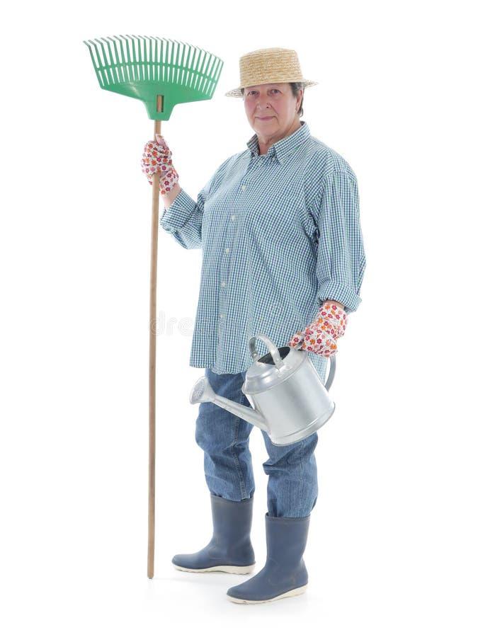 Senior Gardener Stock Image