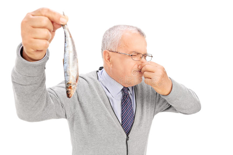 Senior gentleman holding a rotten fish royalty free stock images