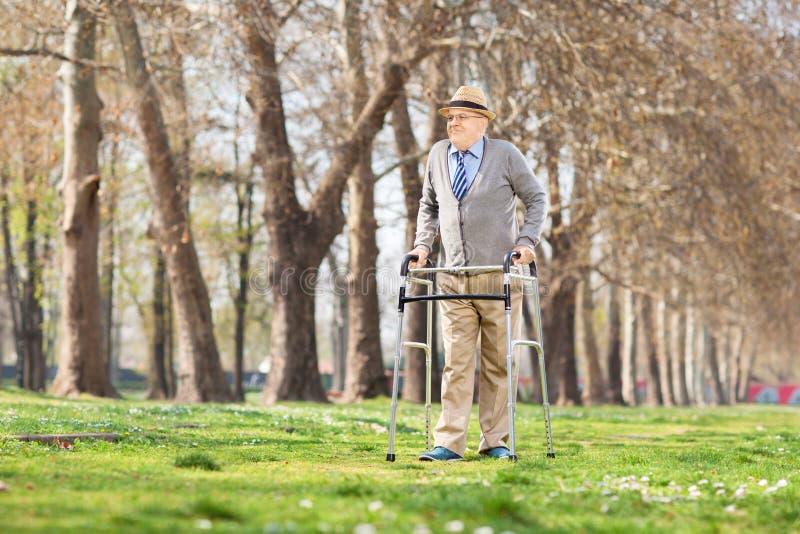 Senior gentleman walking with walker outdoors royalty free stock photo