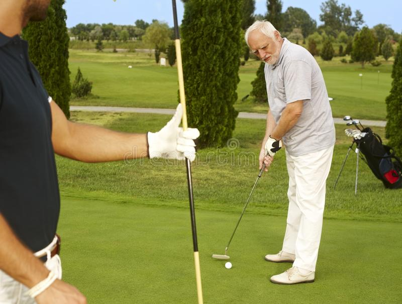 Senior golfer concentrating on ball. Senior golfer standing on the green ready for holing stock image