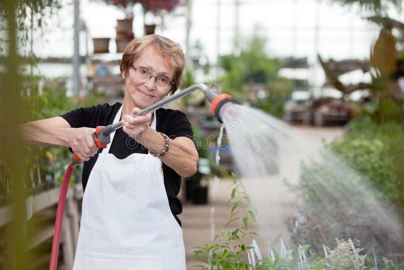 Download Senior Greenhouse Worker stock image. Image of hose, gardening - 21650983