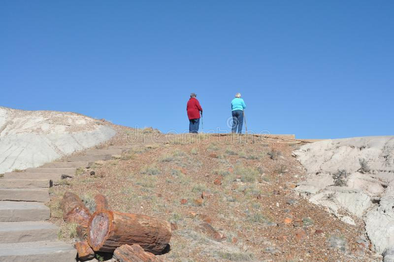 Senior ladies hiking in National Petrified Forest. Two senior ladies with walking sticks at the top of the stone step stairway in National Petrified Forest with stock photos