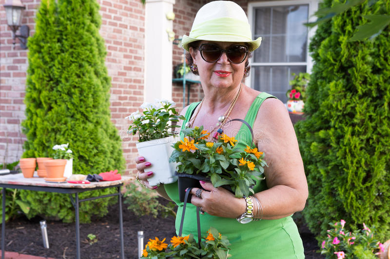Senior lady returning from the nursery with plants. Attractive smiling active senior lady in sunglasses returning from the nursery with colorful ornamental stock images