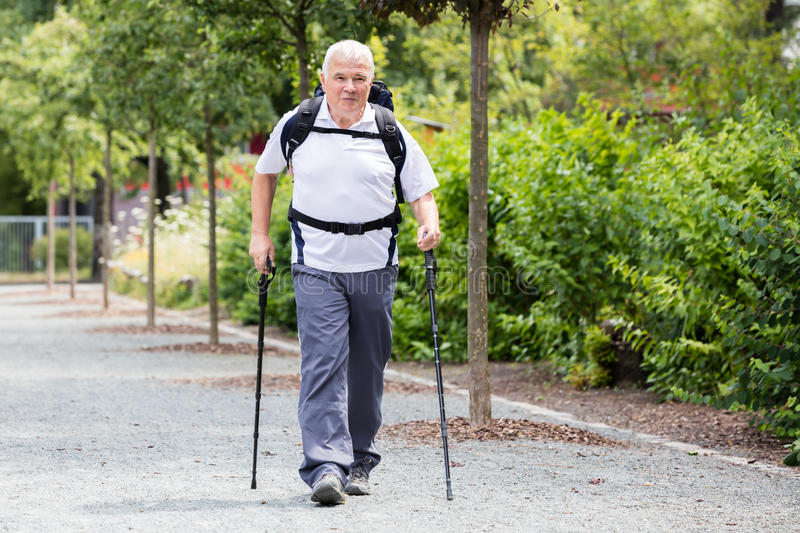 Senior Male Hiker stock photography