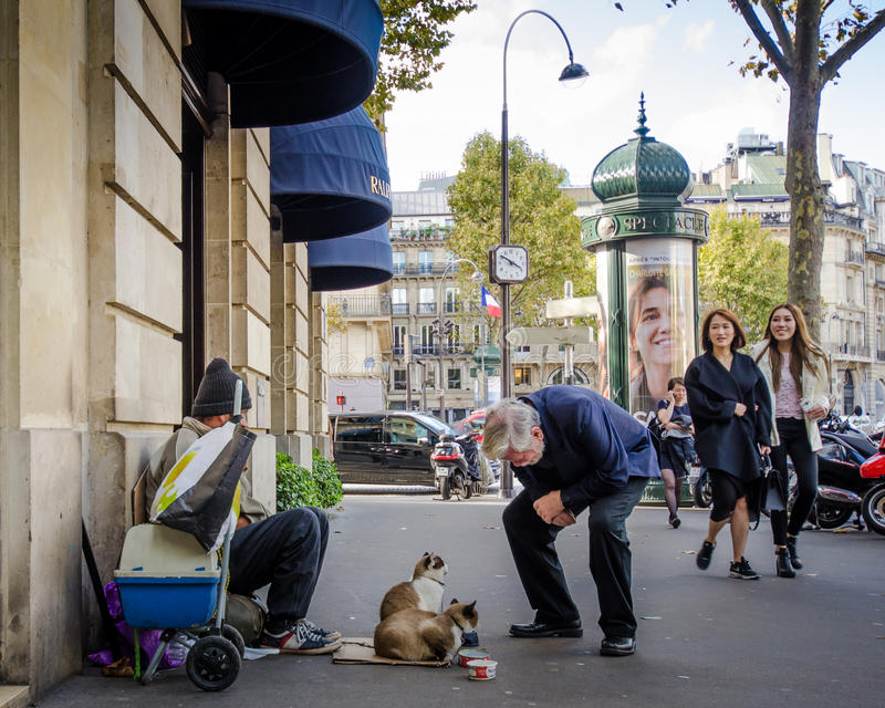 Senior male stops to chat with two cats on Paris street. PPARIS FRANCE OCTOBER 13, 2014 Senior male stops to chat with two cats in front of a luxury shop at stock images