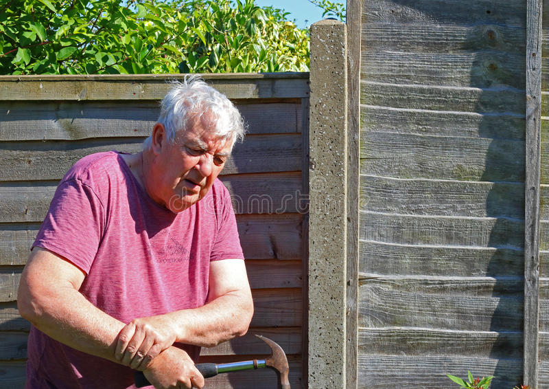 Senior man arthritis wrist. A senior man holding his wrist because of pain caused by arthritis or injury by using a hammer to repair a fence stock images