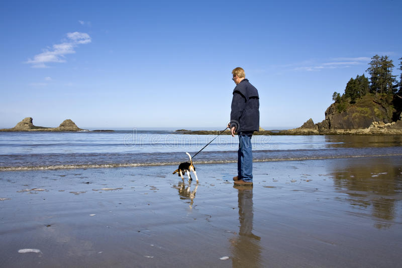 Download Senior Man And Beagle Dog Royalty Free Stock Photo - Image: 14709615