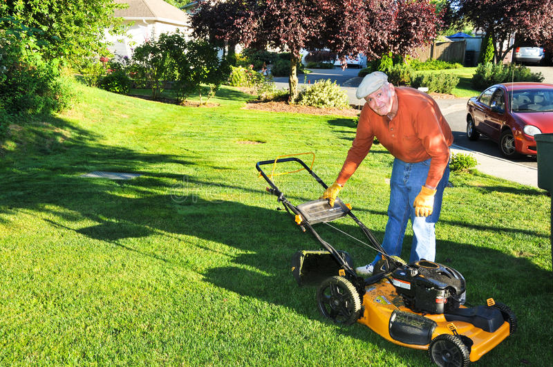 Download Senior Man Cutting Grass stock photo. Image of green - 23767108