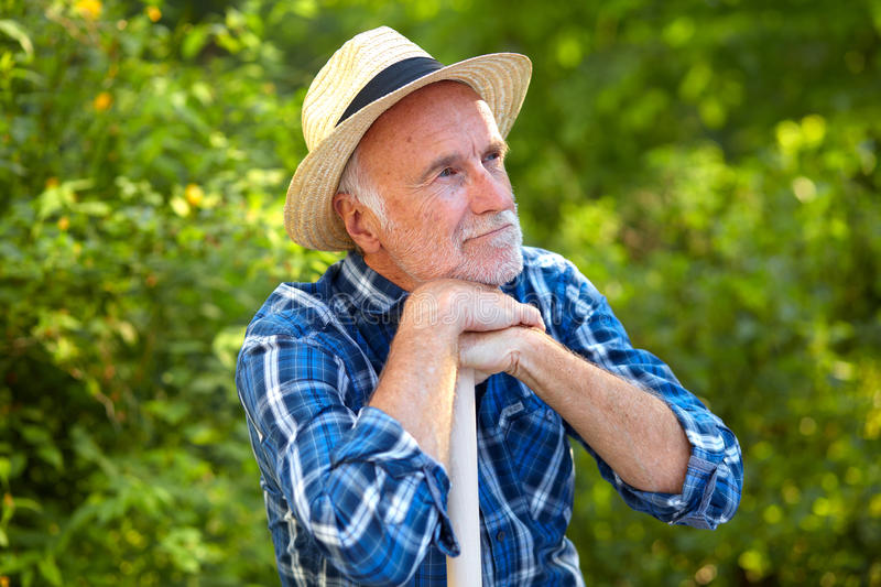 Senior man in garden, thinking stock images