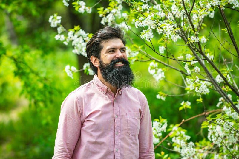 Senior man gardening in the backyard garden. Bearded farmer. Spring gardening routine. stock photography