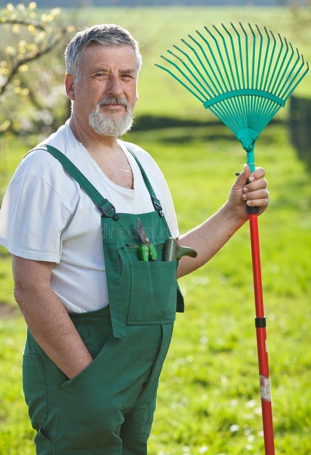 Download Senior Man Gardening In His Garden Stock Photos - Image: 16959813