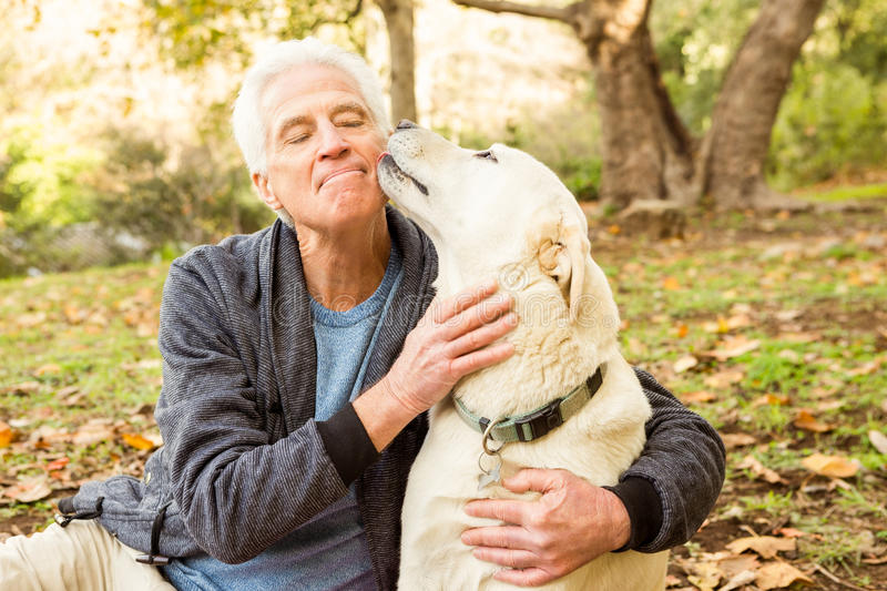 Senior man with his dog in park. On an autumns day royalty free stock photo
