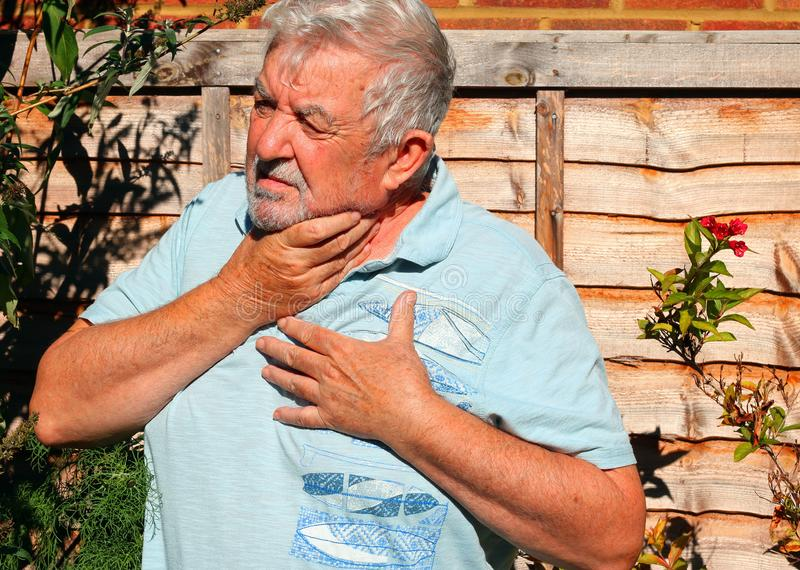 Indigestion. Acid reflux. A senior man holding his chest and throat. He has bad indegestion and acid reflux royalty free stock images