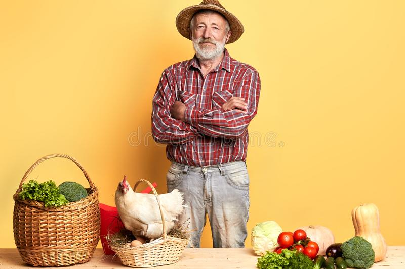 Senior man from local village, picked up vegetables to make salad and ratatouille. Gray-haired senior man from local village, picked up raw vegetables from his stock photo