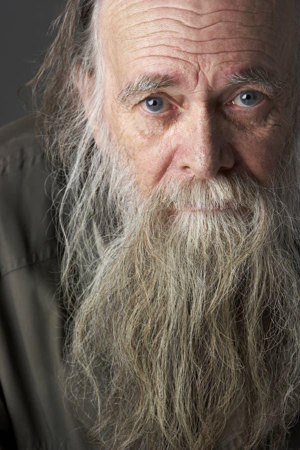Download Senior Man With Long Beard stock image. Image of studio - 10003187