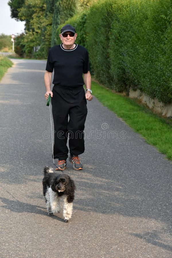 Sports friends, senior man and his harlequin poodle stock image
