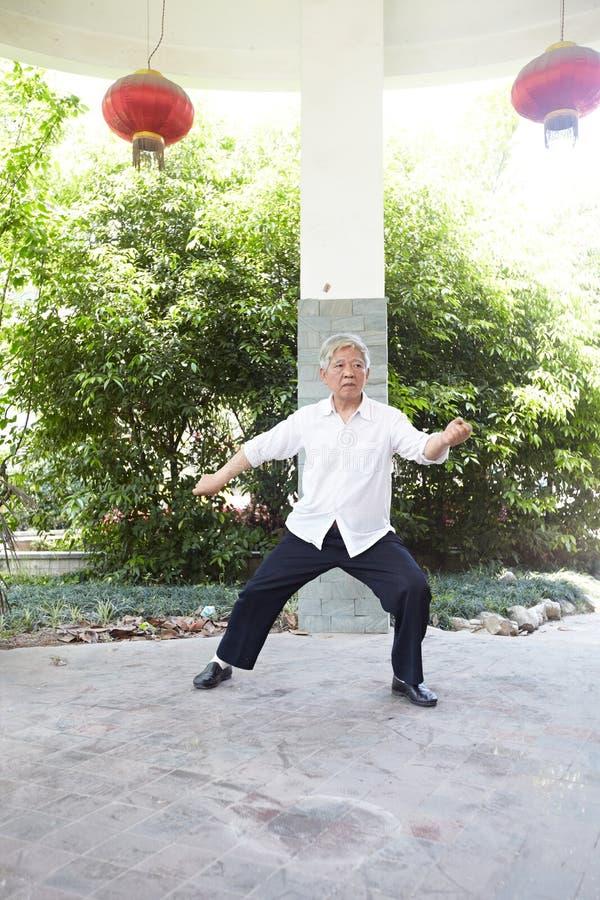Senior man play taiji boxing royalty free stock image