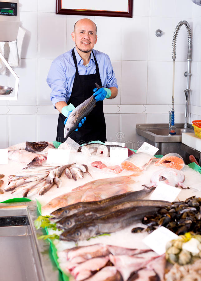 Senior man selling chilled fish. And seafood in store royalty free stock image