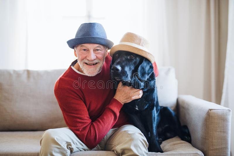 A senior man sitting on a sofa indoors with a pet dog at home, having fun. A senior man and a pet dog with hats sitting on a sofa indoors at home, having fun royalty free stock images