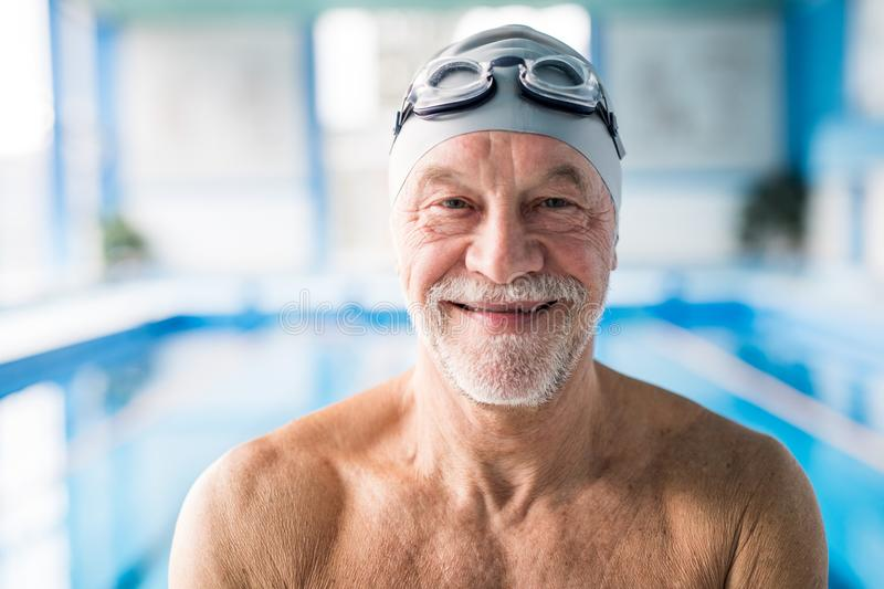 Senior man standing in an indoor swimming pool. Active pensioner enjoying sport stock images