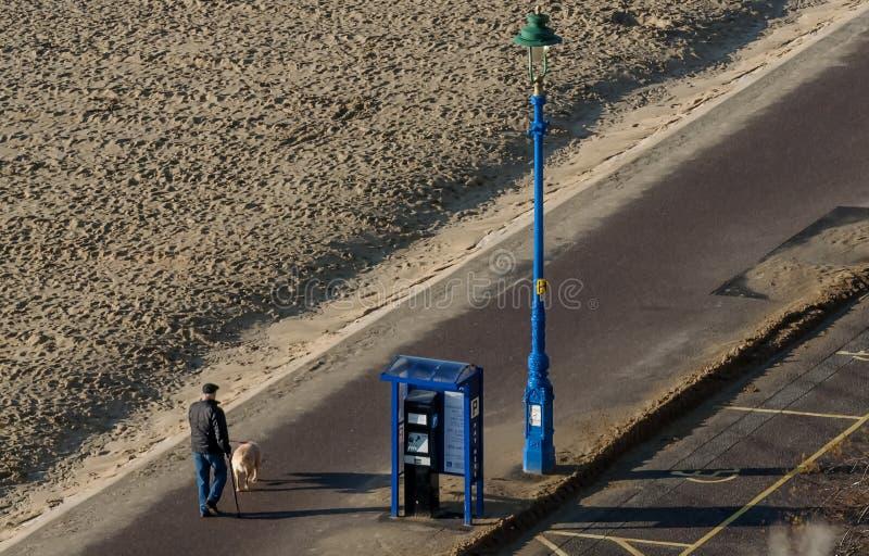 Senior man takes his dog for a walk along the sandy beach on a beautiful sunny day stock photos