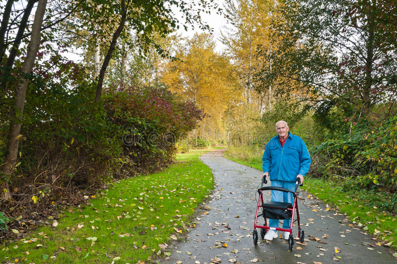 Senior Man with Walker in Park royalty free stock image